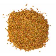 polen-salcie-2