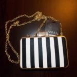 Review Plic Zebra Nissa