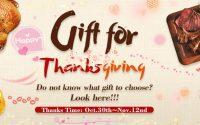 Newchic-Thanksgiving-Sale-2017-2
